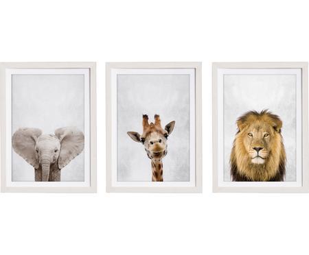 Súprava zarámovaných digitálnych výtlačkov Wild Animals, 3 diely